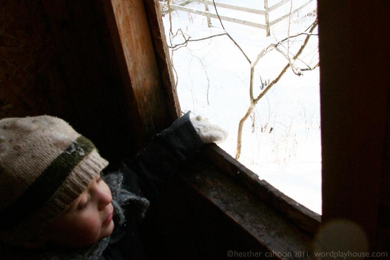 Boy-in-treehouse