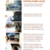 Maple syrup printables
