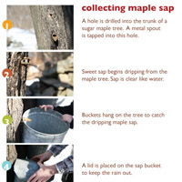 Free printables! maple sugaring