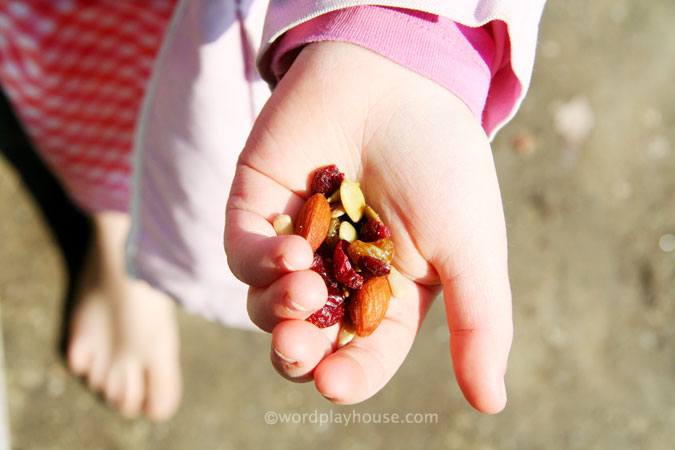 Outside-play-with-kids-natural-trail-mix