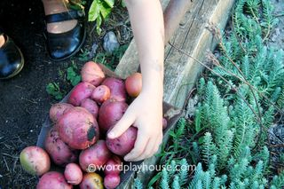 Gardening-with-children